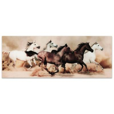 Stampede - Free Floating Tempered Glass Panel Graphic Wall Art