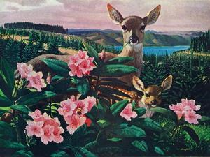 Doe and Fawn by Stan Galli