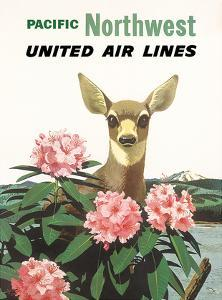 United Air Lines: Pacific Northwest, c.1960s by Stan Galli