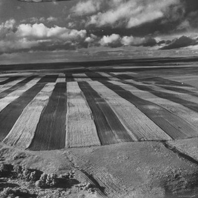 Aerial View of Farmland by Stan Wayman