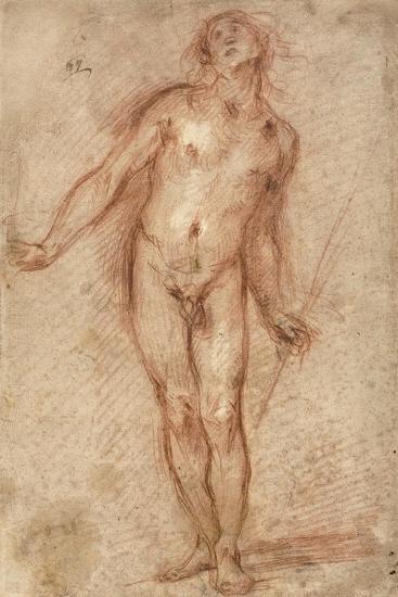 Standing Male Nude, 1637-38-Cecco Bravo-Giclee Print