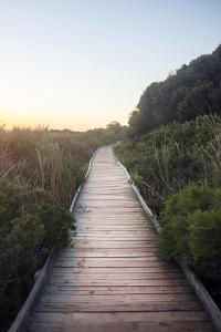 Path to the Beach by Stanislav Solntsev