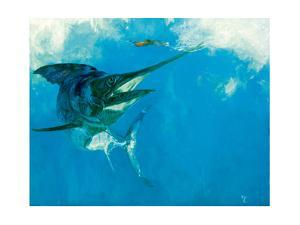 Blue Marlin and Lure in Wake, 1988 by Stanley Meltzoff