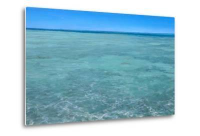 Bonefish Flats No.2: Bonefish Foraging in the Flats