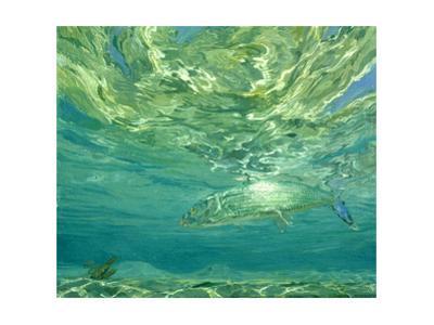 Glittering Bonefish, 1988 by Stanley Meltzoff
