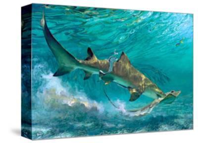 Lemon Shark and Ray, 1992