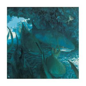 Sleeping Sharks in Cave, 1975 by Stanley Meltzoff