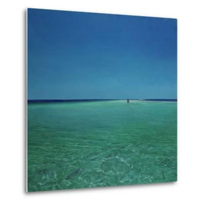The Bonefisherman: a Distant Flats Fisherman Casts His Fly for Bonefish