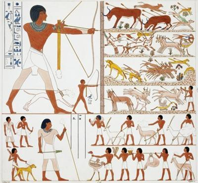 Illustration of Egyptian Frescoes of Hunting Scenes by Frederic Cailliaud