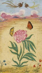 Mughal Miniature Painting Depicting a Peony with Birds of Paradise and Butterflies by Stapleton Collection