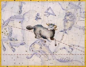 The Constellation of Aries by James Thornhill by Stapleton Collection