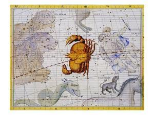 The Constellation of Cancer by James Thornhill by Stapleton Collection