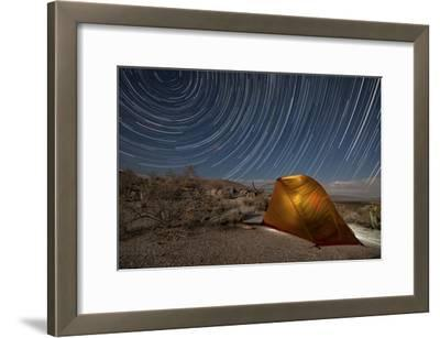 Star Trails Above a Campsite in Anza Borrego Desert State Park, California