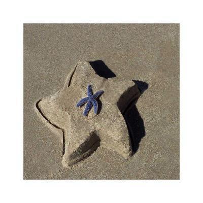 Starfish II-Carl Ellie-Art Print
