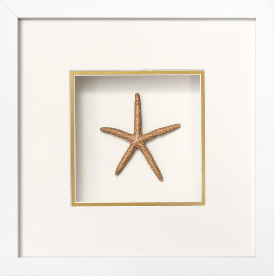 Starfish Shadowbox - Gold Dimensional Product by | Art.com