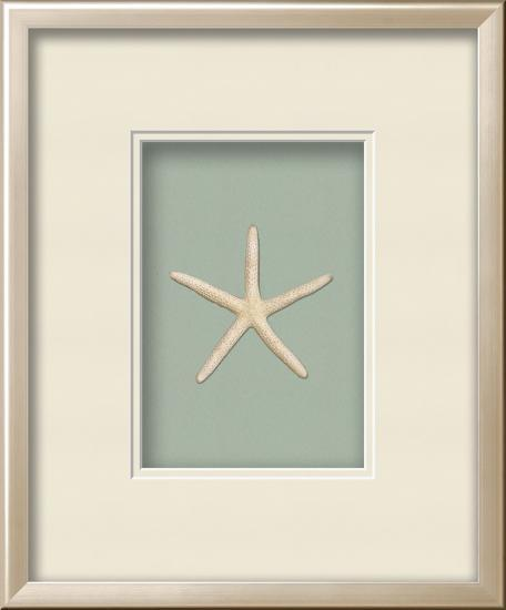 Starfish Shadowbox Seafoam Alternative Wall Decor By Art