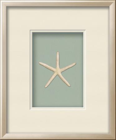 Starfish Shadowbox - Seafoam