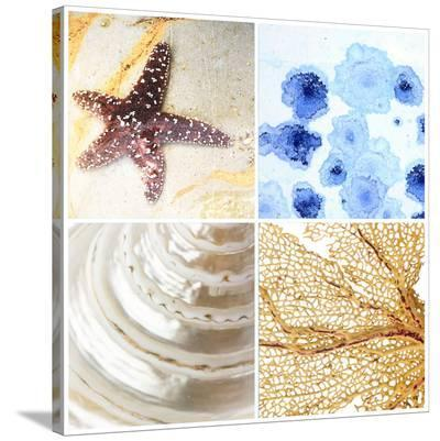 Starfish - Sunset--Stretched Canvas Print