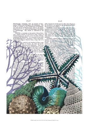 Starfish Under the Sea-Fab Funky-Art Print
