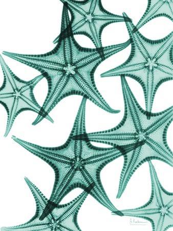 https://imgc.artprintimages.com/img/print/starfish_u-l-pyjzau0.jpg?p=0