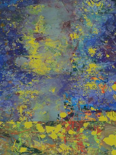 Starry Night-Ricki Mountain-Art Print