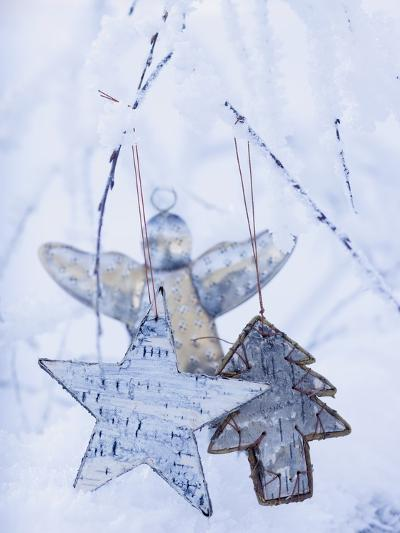Stars and Silver Angel on Snowy Branch--Photographic Print