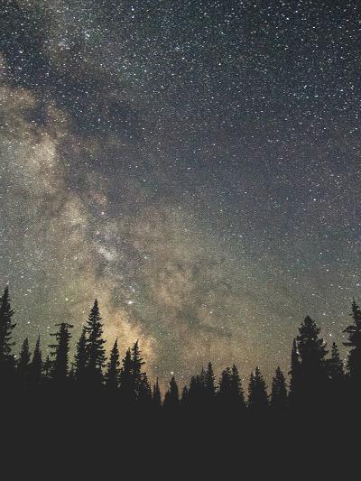 Stars Over The Forest Ii-Luke Gram-Art Print