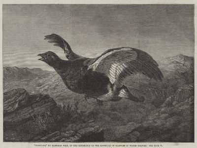 Startled-Harrison William Weir-Giclee Print