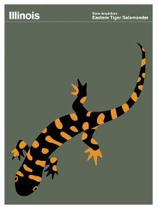 State Poster IL Illinois