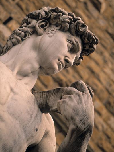 Statue of David, Piazza Della Signoria, Florence, Tuscany, Italy-Walter Bibikow-Photographic Print