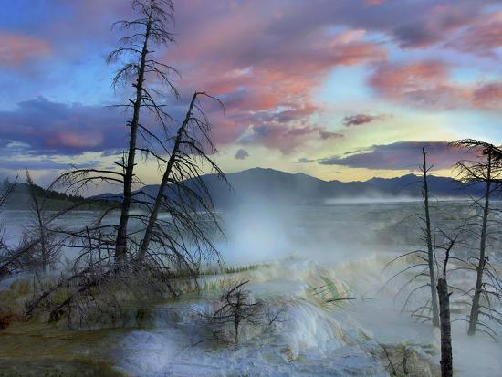 Steam Rising From Travertine Formations, Minerva Terrace, Mammoth Hot Springs, Yellowstone-Tim Fitzharris-Photographic Print