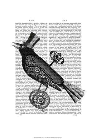 https://imgc.artprintimages.com/img/print/steampunk-crow_u-l-f86p3o0.jpg?p=0