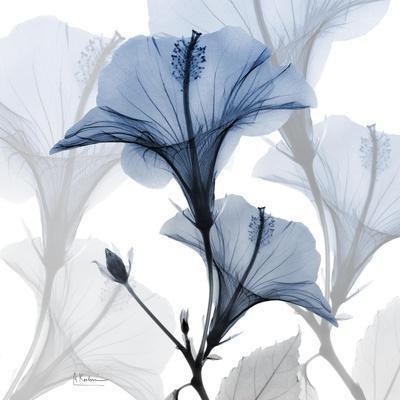 https://imgc.artprintimages.com/img/print/steel-hibiscus_u-l-q1g2p000.jpg?p=0