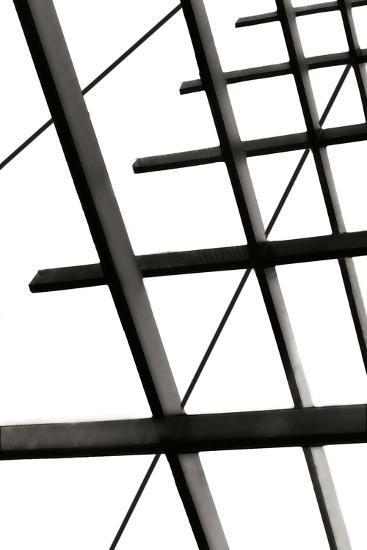 Steel Lattice II-Alan Hausenflock-Photographic Print