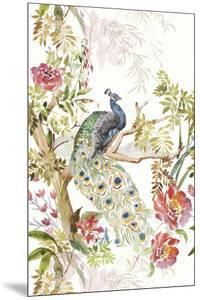 Peacock Perch by Stefan Jans