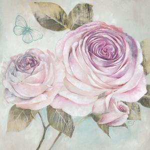 Rose Shimmer by Stefania Ferri