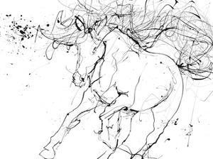 Horse Contour 2 by Stefano Altamura