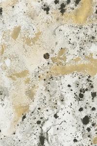 Shake the Dust 1 by Stefano Altamura