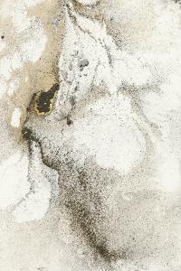 Shake the Dust 2 by Stefano Altamura