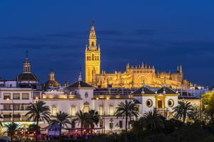 Night view of city skyline with Cathedral and Giralda bell tower, Seville, Andalusia, Spain by Stefano Politi Markovina