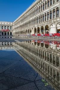 St. Mark's Square Reflected in a Puddle, Venice, Veneto, Italy by Stefano Politi Markovina