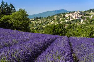 View of Village of Aurel with Field of Lavander in Bloom, Provence, France by Stefano Politi Markovina