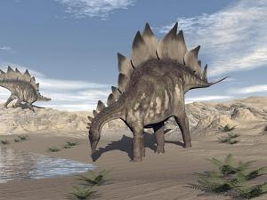 Stegosaurus Dinosaur Drinking Water in the Desert