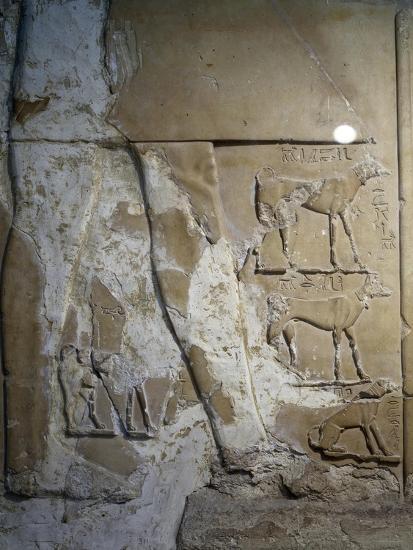 Stele of Antef V, Detail--Giclee Print