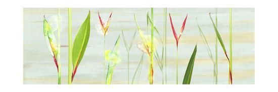 Stems in Tropics I- Shams-Saba-Premium Giclee Print