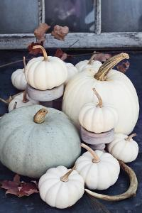 Autumn Decorations with Heirloom Mini White and Grey Pumpkins by Stephanie Frey