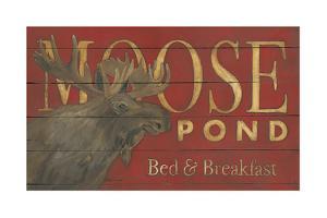 Moose Pond by Stephanie Marrott