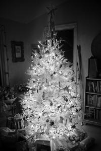 An Infrared Shot of a Brightly-lit Indoor Christmas Tree by Stephen Alvarez