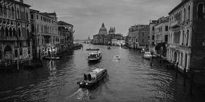 Before Dawn, Deliveries are Made on Venetian Canals by Stephen Alvarez