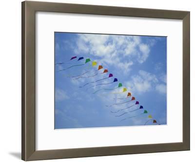Kites Fly in a Rainbow of Colors at the Jockeys Ridge Kite Festival